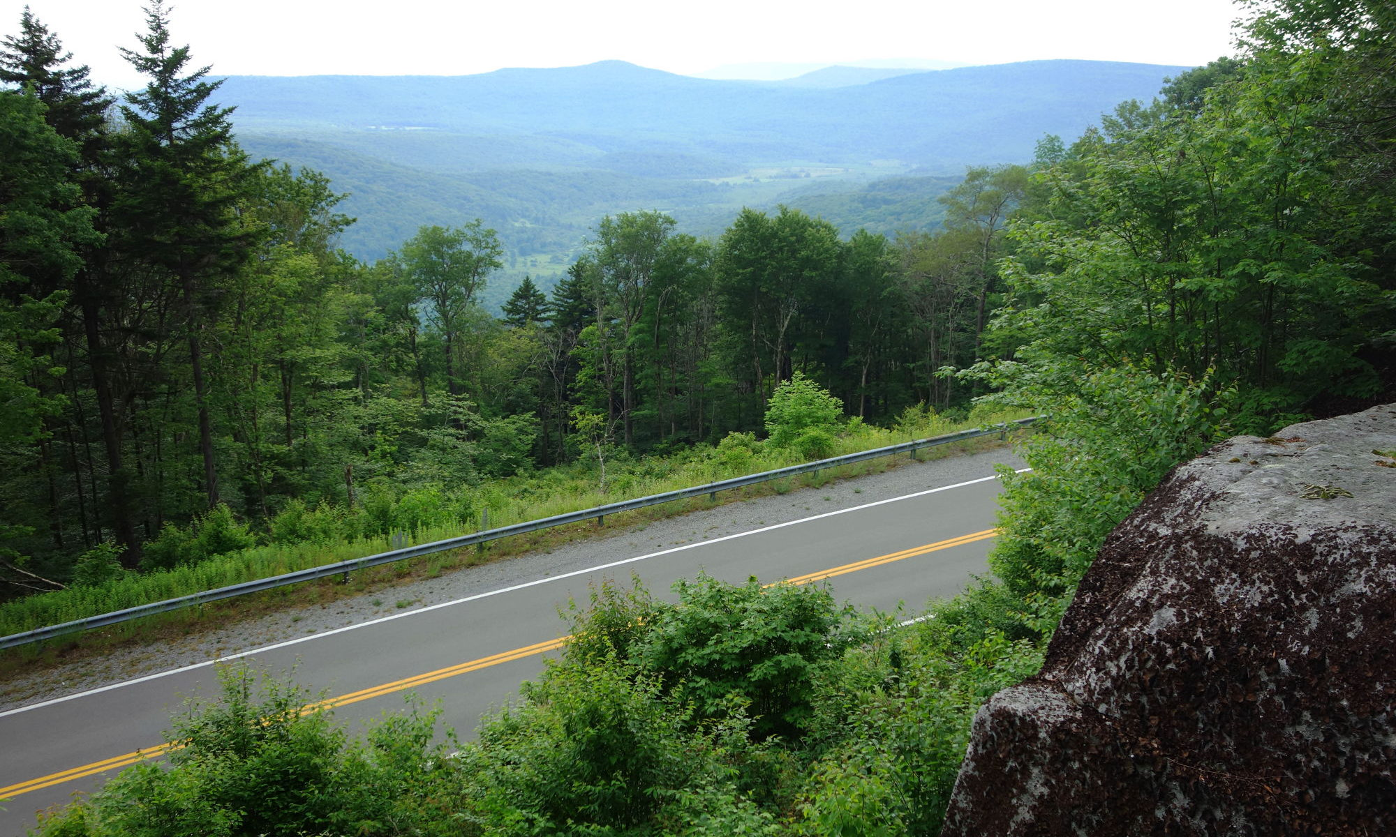 Highland Scenic Highway from Cranberry Glades Overlook